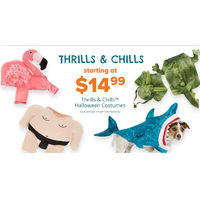 Thrills & Chills Halloween Costumes