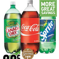 Coke, Sprite or Canada Dry Soft Drinks