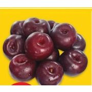 Black or Red Plums - $1.97/lb