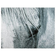Grey Horse Printed Canvas - $62.99 ($27.00 Off)